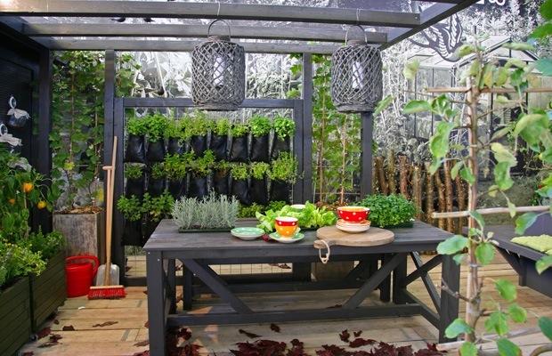 plantes sur toiture terrasse